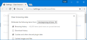 Delete the browser's history and cache